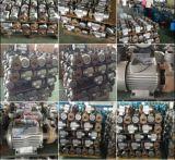 bomba de água 1dk-14 centrífuga elétrica para o mercado 0.37kw/0.5HP de Myanmar