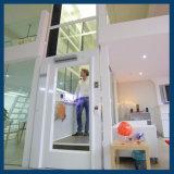 Elevador Home pequeno da casa de campo da casa de vidro panorâmico