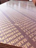 الصين [18مّ] حور لب [بروون] واجه فيلم أسود خشب رقائقيّ مع نوع ذهب علامة تجاريّة