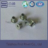 ribattino d'acciaio tubolare pieno capo piano di colore dello zinco di bianco di 4X5mm