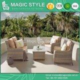 Conjunto de sofá de combinação de vime conjunto de sofá exterior (estilo mágico)