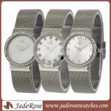 Het Horloge van de Dames van het Roestvrij staal van de Goede Kwaliteit van de Manier van de charme