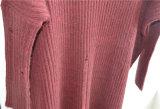 De Vrouwen van de winter breien de Sweater van de Trui voor Dames