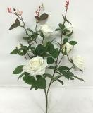 Spruzzo dentellare della Rosa 75cm