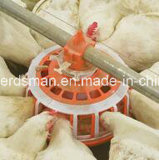 Equipo automático del criador de la granja avícola para la parrilla del padre