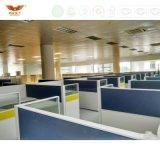 Sitio de trabajo recto moderno con 6 asientos de la persona para los muebles de oficinas