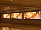 Visualizzazione di LED dell'interno sottile eccellente dell'affitto P3.91