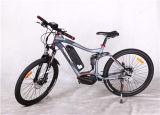20インチのFoldable Ebikeのアルミニウム中断36V 250WキットEbike