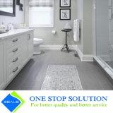 Тщета ванной комнаты отделки лака трасучки белая