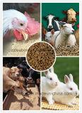 Chaîne de production d'alimentation des animaux de coût bas