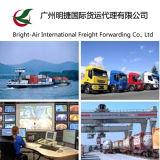 En valeur l'agent maritime de confiance de la distribution exprès de courier de DHL de Chine vers le Pérou