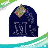 Azul personalizado do estilo feito malha/chapéus inverno do Knit com bordado do logotipo (068)