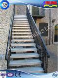 Escalera / plataforma / escaleras de acero de la alta calidad con la autentificación del Ce (FLM-SP-004)