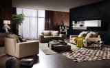 2016新しい現代優雅なデザイン居間ファブリック1+2+3ソファー(HC8110A)