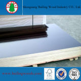 Film negro Faced Marine Plywood con Logo