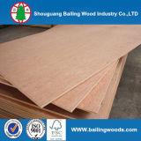 Bintangor/madera contrachapada roja de Meranti/Okoume, madera contrachapada comercial