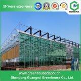 Niedriger Preis-grünes Glashaus für Landwirtschafts-Gewächshaus-Glas