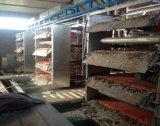 Camp de couche de poulet de système automatique pour le grilleur