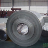 Erstklassige Qualitätsteilbarer Edelstahl-Ring (316, 316L)
