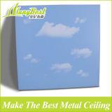 Vuurvast Aluminium klem-in Decoratief Plafond