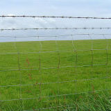 Recinto dell'azienda agricola/recinto rivestito caldo dell'azienda agricola di qualità di /High del recinto dell'azienda agricola dell'azienda agricola Fence/PVC di vendita (SH12)