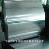 Coil에 있는 SGCC Galvanized Steel Sheet