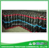 [فكتوري بريس] اللون الأخضر [سبس] سقف يصمّم غشاء من الصين