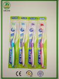Verpackungs-Erwachsen-Zahnbürste des Standplatz-12-PC