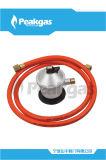 Régulateur de basse pression avec le tuyau GF-988-25 (S200) de Dvgw