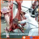 La chaîne de production de massacre de vache à Halal bétail d'abattoir usinent
