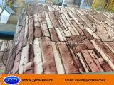 Het Ontwerp PPGI van de steen voor de Markt van de Oekraïne van China