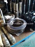 Eixo da engrenagem cónica de eixo movimentação da bomba Lbq18/D-03-06/07 do PC para a bomba de parafuso no campo petrolífero