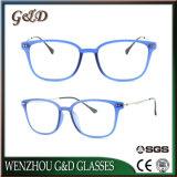 Het populaire Plastic Optische Frame van het Oogglas Ultem met Slank Roestvrij staal 7020