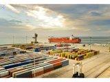 Consolider le service de fret maritime unique le plus bas de Chine vers le monde entier
