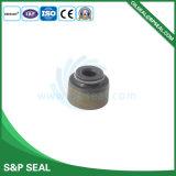 Valvola di gomma Oilseal Bp-A080 della guarnizione meccanica di Oilseal della guarnizione