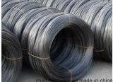 Collegare temprato nero del ferro di Soft&Flexibility dalla fabbrica della Cina