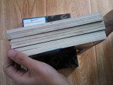 A madeira compensada impermeável da construção, película de 18mm enfrentou a madeira compensada