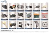 Motor, Controlemechanisme, Lader, AchterAs, Gaspedaal, batterij, VoorGlas, LEIDENE Lichte, HoofdLamp, Schokbreker, Ketting, Tand, Vliegwiel, Lager, de Vervangstukken van de Riksja
