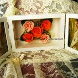 Красивейший и милый сохраненный Wedding цветок с различным видом