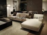 Muebles modernos del sofá de la sala de estar del estilo europeo (D-79)
