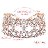 方法贅沢できらびやかで完全なラインストーンのダイヤモンド野生カラーチョークバルブのネックレスの宝石類