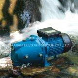 Pompe à eau électrique d'utilisation de maison d'eau propre d'amoricage d'individu (JET-B)