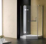 オーストラリアの公認の明確な緩和されたガラスのシャワーの区分(T2)
