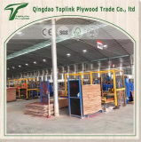 Kiefer-Furnierholz verwendet für Möbel/lamellenförmig angeordnetes Blatt-/Bauholz-Holz
