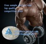 Hoher Reinheitsgrad-wirkungsvolles aufbauendes Puder Anavar für Bodybuilding