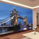 Impressão impermeável personalizada das pinturas murais do papel de parede dos gráficos do projeto