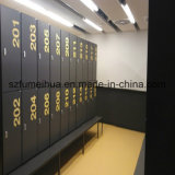 Casier de mémoire en stratifié de blocage de pièce de monnaie de Fumeihua