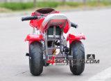 三車輪が付いている耐久350W 24Vの電気小型のバイク