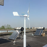 Turbina di vento orizzontale 600W 24V