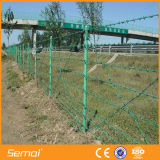 Гальванизированная сетка колючей проволоки PVC для Railway лужайки
